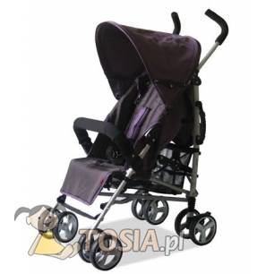 Kees Buggy Only1